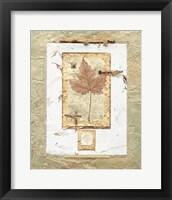 Framed Leaves II