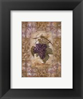 Framed Vitis Vinifera Grape
