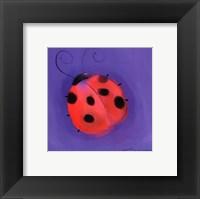 Framed Ladybug On Blue