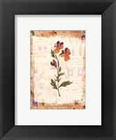 Framed Posies with Patterns