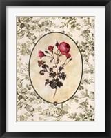 Framed Toile Rose I