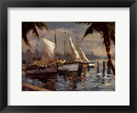 Framed Tropical Sail