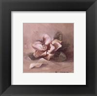 Framed Sunlit Magnolia