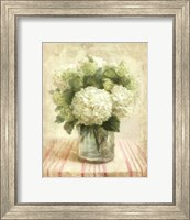 Framed Cottage Hydrangeas in White