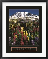 Framed Serenity - Mt. Rainier