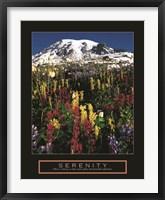 Framed Serenity - Mt. Rainier