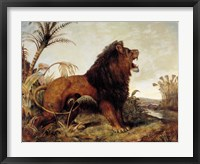 Framed Lion in the Jungle