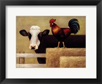 Framed Barnyard Cow