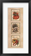 Framed Vintage Vegetable Assorted