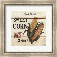 Framed Fresh Picked Sweet Corn