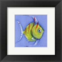 Framed Striped Angel Fish