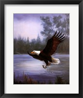 Framed Eagle Fishing