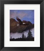 Framed Eagle Soaring