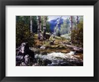 Framed Rocky Mountain Deer