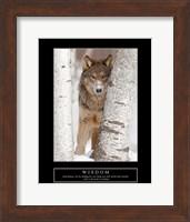 Framed Wisdom - Gray Wolf