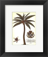 Framed Palm and Crest I