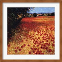 Framed Field Of Red And Gold