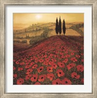 Framed Poppy Field