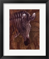 Framed Safari Zebra