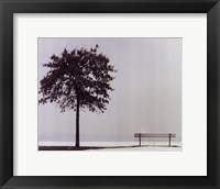 Framed Bench: Oyster Bay, NY