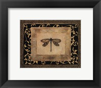 Framed Dragon Fly I