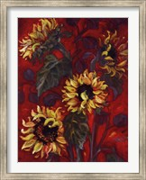 Framed Sunflowers I