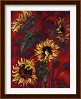 Framed Sunflowers I