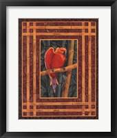 Mandarin Love Bird Framed Print