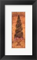 Framed Italian Cypress