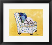 Framed Sidney The Bull Dog (Polka Dot)