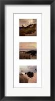 Beach Trio I Framed Print