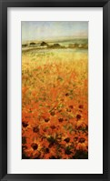 Framed Field With Sunflowers