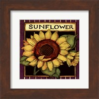 Framed Sunflower Seed Packet