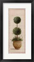 Framed Topiary Ball II