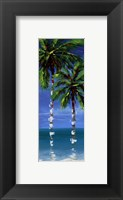 Framed Coastal Palm IV