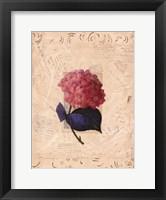Garden Botanical ll Framed Print