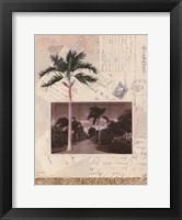 Framed Nassau