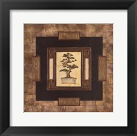 Framed Art Of Bonsai I
