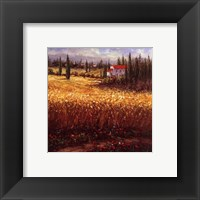 Framed Tuscan Wheat