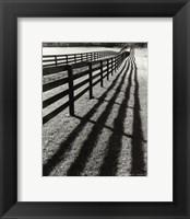 Framed Fences And Shadows, Florida