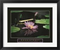 Framed Consistency - Pond Flower