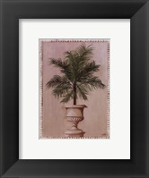 Framed Palm Appeal II