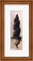 Framed Roman Topiary l