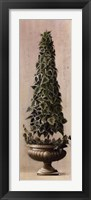 Framed Florentine Topiary l