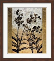 Framed Orchid Silhouette