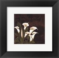Midnight Calla Lily Framed Print