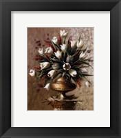 Framed Spring Expressions ll