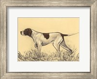 Framed Hunting Dogs-Pointer