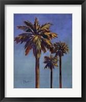 Framed Santa Rita Palms I