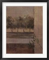 Framed Olive Groves II